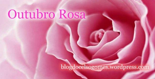 ROSA arte BLOG