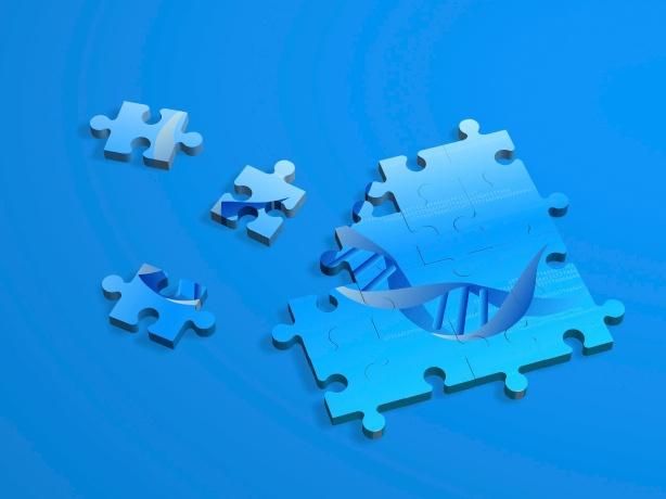 IMAGEM QUEBRA CABEÇA - DNA